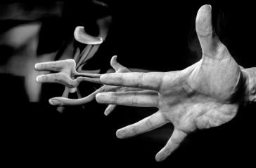 Amaris hands2