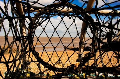 Alfie Whitstable_0710 40x30