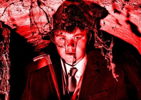 Jacob WIlder Josh Cobweb 4066 red ret 50x70