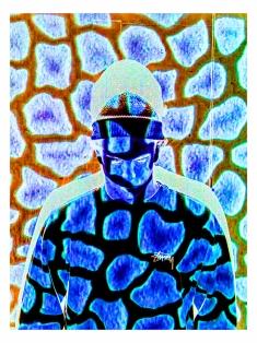 Josh giraffe pattern _0360 40x30