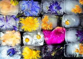 Kiisi Final ice block together_3378 50x70