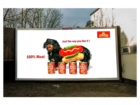 Sophie Megarry Hotdog billboard8137 final ret 40x30